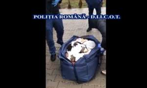 Bistrițean prins în flagrant cu 17 kg de cannabis (VIDEO)